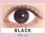【ブラック】ReVIA 1day color レヴィア ワンデー カラー 10枚 [Lcode]