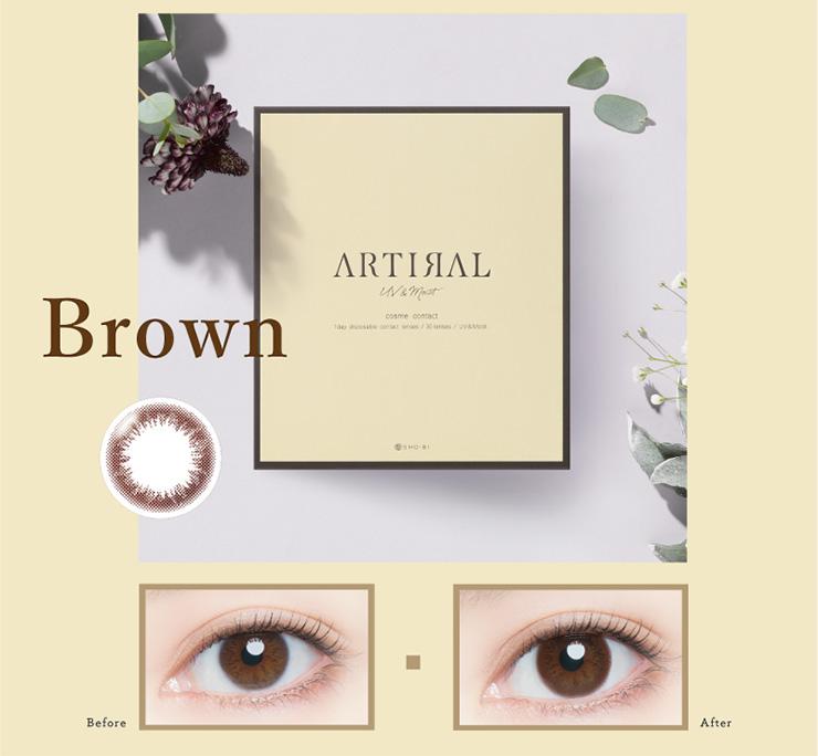 ブラウン 30枚